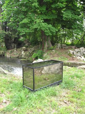 http://laurentledeunff.fr/files/gimgs/189_aquarium-avec-des-miroirs-sans-tain-pour-poisson-timide2.jpg