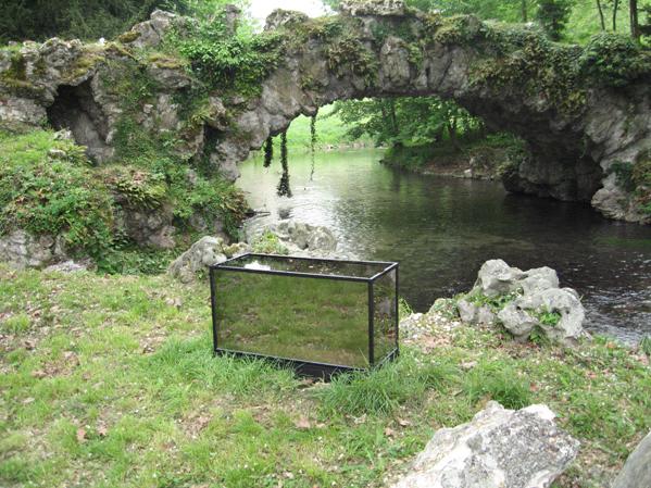 http://laurentledeunff.fr/files/gimgs/189_aquarium-avec-des-miroirs-sans-tain-pour-poisson-timide4.jpg