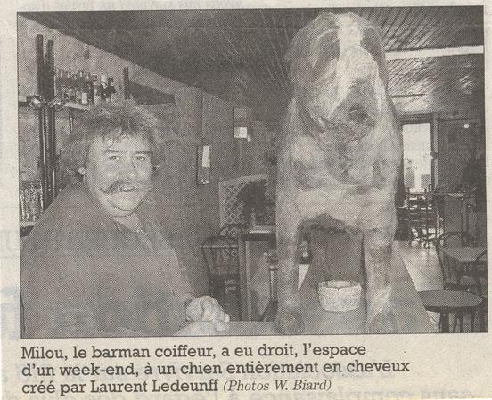 http://laurentledeunff.fr/files/gimgs/53_saint-bernard.jpg